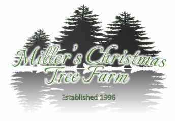 Miller's Christmas Tree Farm